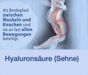 Video Hyaluronsäure Sehne Stuttgart